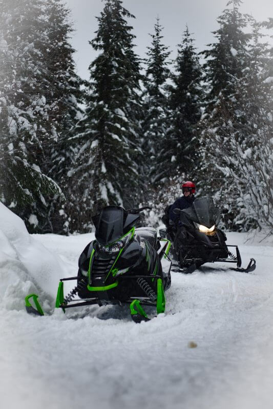Two snowmobiles in front of woods